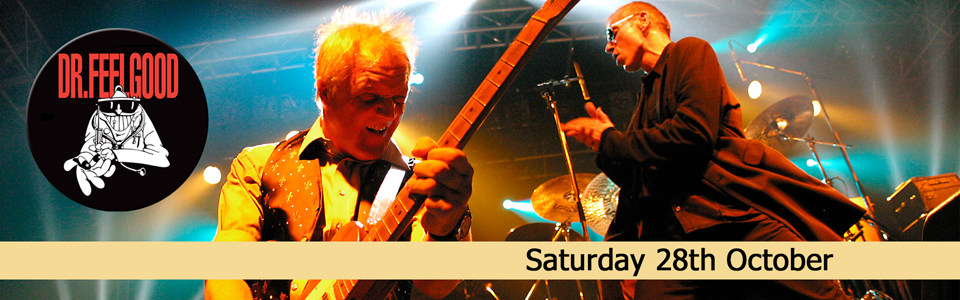 Dr Feelgood web top banner
